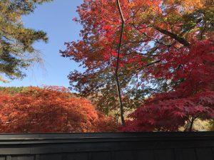 武家屋敷の紅葉