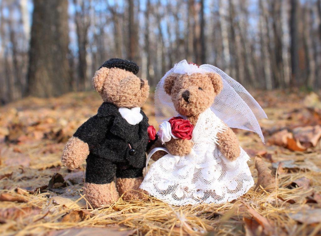 wedding-1034430_1920